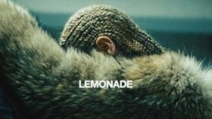 lemonade crop