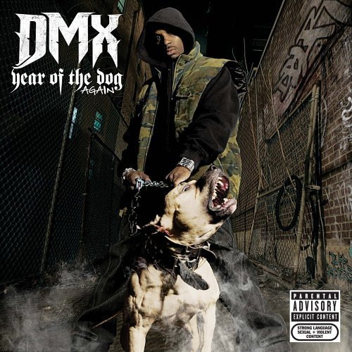 year of the dog again